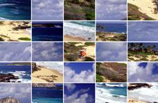 Hawaii-puzzle