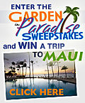 Maui-sweepstakes