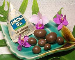 Chocolate-mac-nut-snack