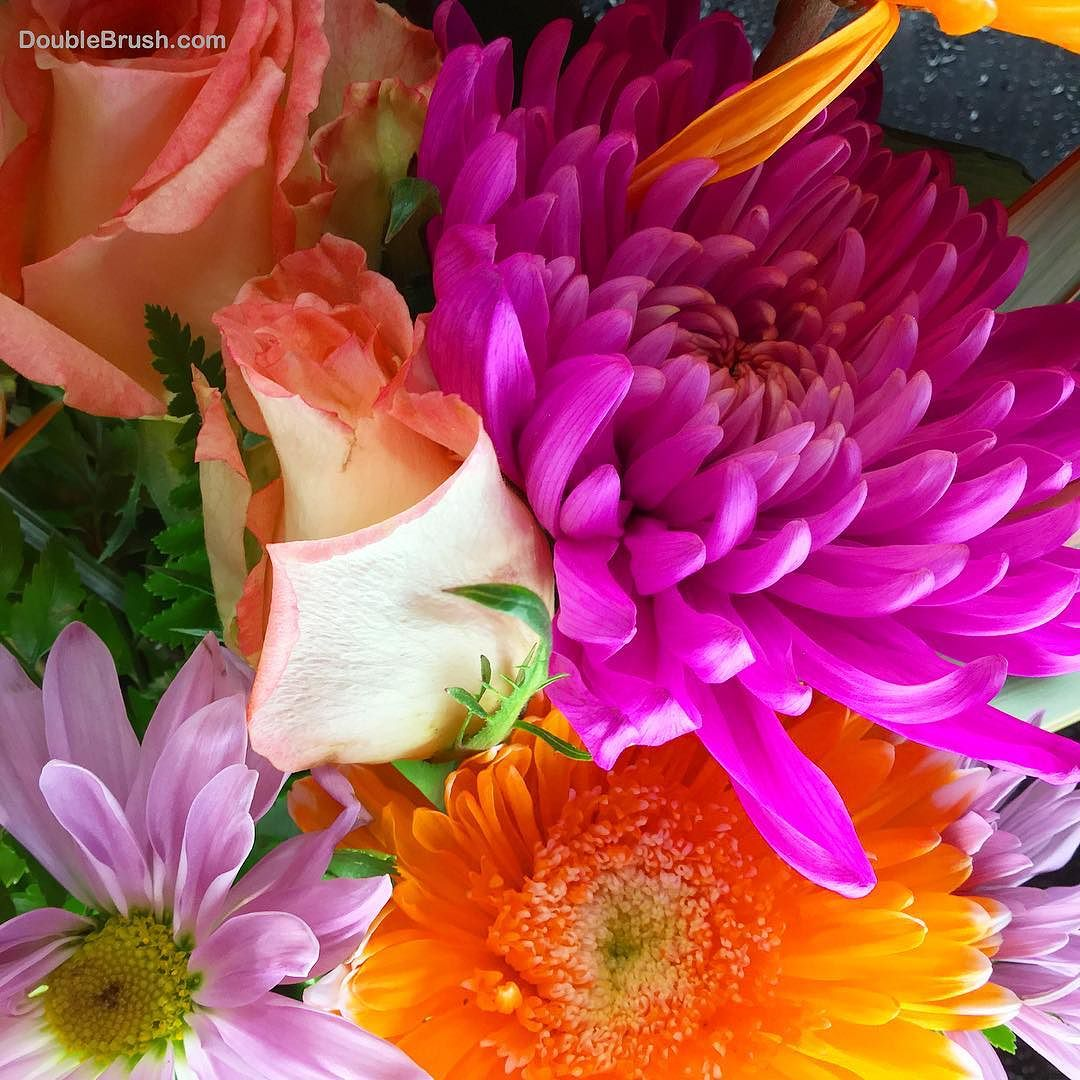I Love Flowers For Their Shapes Colors Textures And Scents What