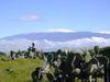 Maunakeavolcano